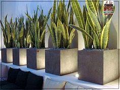 Ideas Stone Patio Garden Potted Plants For 2019 Landscape Lighting, Front Yard Landscaping, Garden Pots, Flower Pots, Landscape Design, Exterior Shutters, Exterior Signage, Stucco Exterior, Outdoors