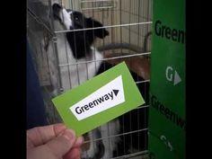 Варежка Твист от компании GreenWay