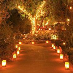 Backyard Wedding Lighting, Outdoor Wedding Decorations, Backyard Tent Wedding, Whimsical Wedding Decor, Outdoor Party Decor, Diy Wedding Tent, Wedding Walkway, Elegant Backyard Wedding, Outdoor Party Lighting