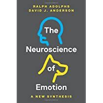 Check this out at Amazon Brain Shape, Future Research, David J, Neuroscience, Insight, Writing, Roots, Presents, Walmart