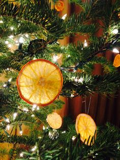 Toddler friendly ornaments: dried fruit slices