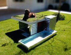 fancy dog house plans free best luxury ideas on rooms outdoor pool