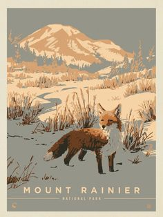 Graphic Design Illustration, Illustration Art, American National Parks, Gig Poster, Mount Rainier National Park, National Park Posters, Nature Posters, Park Art, Guache