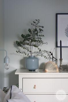 Eukalyptus, skandinaviskt hem, inredning