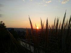 Sonnenaufgang SAP