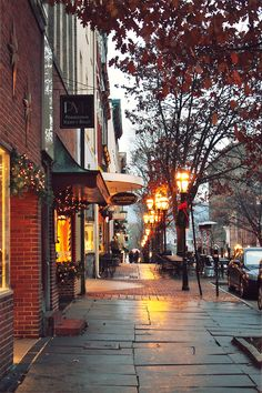 I would love to walk down these street, stopping in the cozy little shops with Christmas window displays.