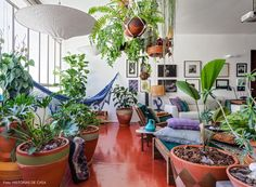 Piso de cimento queimado vermelho, rede de balanço e muitas plantas dispostas em vasos de barros.