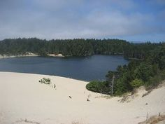 Honeyman State Park, Oregon.  One of my favorite places my family went annually