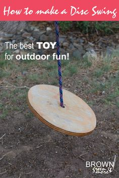 Hands down the most inexpensive toy for outdoor fun. The DISC ROPE SWING!