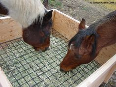 Slow feeder 4x4 two horses sharing