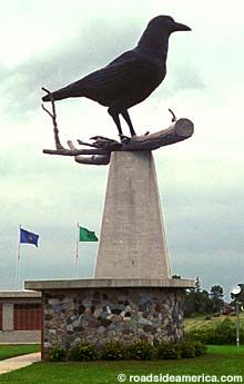 Belgrade Minnesota. The world's largest crow! I drove by it everyday to go to school!!