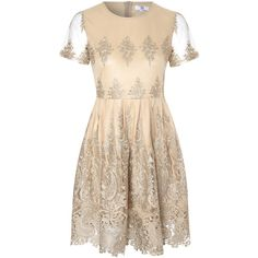 True Decadence Lace Skater Dress, Gold ($115) ❤ liked on Polyvore featuring dresses, short sleeve maxi dress, gold cocktail dress, flared skirt, skater dress and lace dress