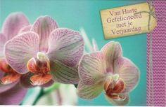 Van harte gefeliciteerd met je verjaardag!    Felicitatiekaart met met mooie orchideeen Happy Birthday, Plants, Paper Board, Happy Brithday, Urari La Multi Ani, Happy Birthday Funny, Plant, Planets, Happy Birth