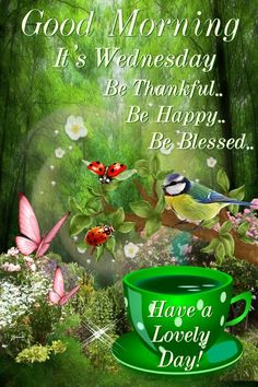 Good Morning, Happy Wednesday, I pray that you have a safe and blessed day! Wednesday Morning Greetings, Wednesday Coffee, Good Wednesday, Hump Day Quotes, Good Day Quotes, Tumblr Image, Prayer Quotes, Morning Wish, Facebook Image