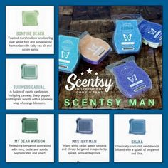 #Scentsy man fragrances for anyone who loves manly scents from our 2015 Fall/Winter catalog.