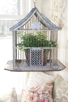 *Simple decorating idea~ Use a vintage bird cage as a plant hanger and place in a sunny location in your home:)