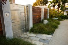 Serene Backyard - modern - landscape - san diego - Hamilton-Gray Design, Inc. Contemporary Landscape, Landscape Design, Landscape Architecture, Architecture Design, Hamilton, Concrete Pathway, San Diego, Modern Fence, Entrance Gates