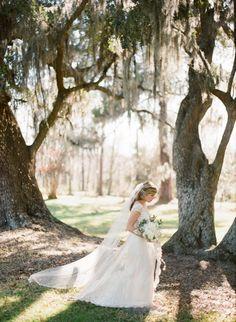Claire Pettibone Dress & Veil, spanish moss: #weddingdress #veil: www.josevillaphoto.com