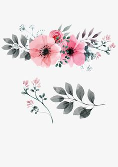 Pink,Flowers,Flowers,Collection,Vector