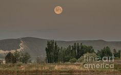 Full Moon Sitting : See more images at