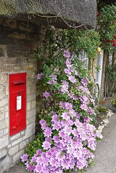 gatestowonderland: Jessica's Tea Shop & Post Office.  Weekley Northants (by mick / Lumix on Flickr) — FUCKITANDMOVETOBRITAIN