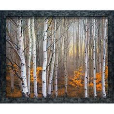 Amazon.com: Aspen in Fog by Charles Cramer framed 27x33 artwork aspen landscape print: Home & Kitchen