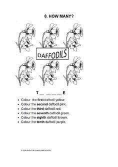Daffodils - how many?