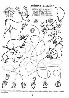 """Animal Tracks Coloring Pages Beautiful Science Coloring Pages for Kindergarten A. - Animal Tracks Coloring Pages Beautiful Science Coloring Pages for Kindergarten Awesome K…â""""¢eml - Crayola Coloring Pages, Bear Coloring Pages, Printable Coloring Pages, Coloring Pages For Kids, Free Coloring, Coloring Books, Outdoor Education, Kids Education, Preschool Worksheets"""