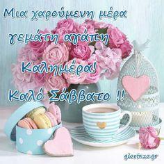 Good Night, Good Morning, Beautiful Pink Roses, Nighty Night, Bom Dia, Buen Dia, Have A Good Night, Bonjour, Buongiorno