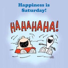 Winter Starts Today - Ha Ha Ha - Snoopy and Charlie Brown Peanuts Cartoon, Peanuts Gang, Peanuts Comics, Snoopy Cartoon, Charlie Brown And Snoopy, Charlie Brown Quotes, Snoopy Love, Snoopy And Woodstock, Snoopy Comics