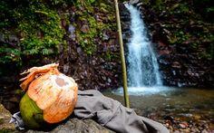 Kokosnuss Snack beim Wandern auf St. Lucia © Julia Schafhauser