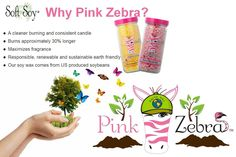 Join Pink Zebra and become a Consultant today! Pink Zebra Party, Pink Zebra Home, Pink Zebra Sprinkles, Scented Wax Melts, Soy Wax Melts, What Is Pink Zebra, Pink Zebra Consultant, Burning Candle, Smell Good