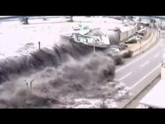 JAPAN TSUNAMI 2011. Luke 21:25  ........ the sea and the waves roaring;