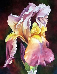 Watercolor: Sunlit Iris Artist: Brenda Jiral Copyright: Brenda Jiral