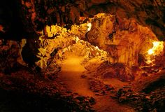 """The Hohle Fels (also Hohlefels, Hohler Fels, German for """"hollow rock"""") is a cave in the Swabian Alps of Germany that has yielded a number of important archaeological finds dating to the Upper Paleolithic. Artifacts found in the cave represent some of the earliest examples of prehistoric art and musical instruments ever discovered. The cave is just outside the town of Schelklingen in the state of Baden-Württemberg, near Ulm."""
