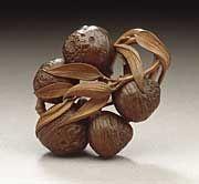 Soko (Morita Kisaburo) (Japan, 1879 - 1943)   Strung Acorns, first half of 20th century  Netsuke, Wood with staining