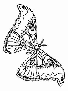 252 Best Fun Coloring Pages for Kids and Adults images