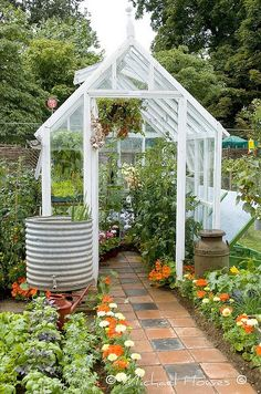 with Flagstones Greenhouse in the backyard.I want the rain barrel with spigot!Greenhouse in the backyard.I want the rain barrel with spigot!