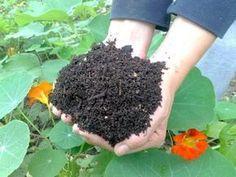 Ako mať za pár mesiacov kompost