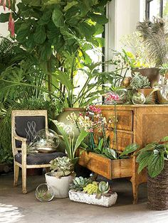 A look at Atlanta's GARDEN shop that is defining the art of indoor gardening- (. - Healty fitness home cleaning Tropical Home Decor, Tropical Houses, Garden Shop, Home And Garden, Dream Garden, Estilo Tropical, Hot House, Green Rooms, Architectural Digest