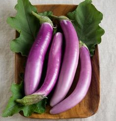 GrowHeirloom Eggplant - Long Asian Eggplant Seeds:These long, purple fruits are at their most tender at long. Long Asian Eggplant is native to tropical Asia and very popular in Japan, China, India, Thailand and the Philippines. Asian Vegetables, Perennial Vegetables, Fresh Vegetables, Veggies, Herb Seeds, Garden Seeds, Planting Seeds, Autumn Garden, Spring Garden