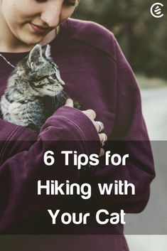 Could your cat be an Adventure Cat? There could be an explorer just waiting for the right training to burst forth into the world. Here are some tips on how to start and how to stay safe while hiking with your feline friend. #cats #pets #hiking #fitness #adventure #outdoors #kittens #catlady #cedarcide