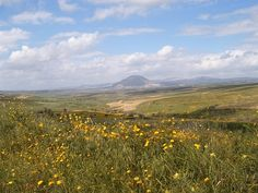 View across the Jezreel Valley to Mount Tabor