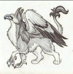 gryphon – The Dancing Hare Mythical Creatures Art, Mythological Creatures, Magical Creatures, Fantasy Creatures, Griffon Tattoo, Griffin Drawing, Myths & Monsters, Theme Harry Potter, Creature Drawings