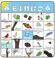 Play Nature Bingo at a Mass Audubon Wildlife Sanctuary near you! Print out the cards & see if you can be the first to find all the items in a row, column, or corner to corner! We have Bingo cards with year-round and seasonal nature themes. Camping And Hiking, Camping With Kids, Nature Hunt, Forest School, Bingo Cards, Practical Gifts, Childhood Education, Summer Activities, In Kindergarten