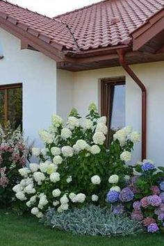 kert Education education jobs near me Backyard Play, Backyard Ideas, Hydrangea, Flower Pots, Paint Colors, Beautiful Flowers, Sweet Home, Home And Garden, Outdoor Structures