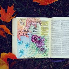80 Best Ecclesiastes Bible Journaling Images On Pinterest