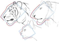 How To Draw Cats Big And Small: Face and Frame Differences Animal Sketches, Animal Drawings, Cool Drawings, Art Sketches, Eye Drawings, Furry Drawing, Cat Drawing, Face Profile Drawing, Drawing Faces