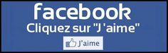 "Top 100+ Must-Know French Words for the ""Facebookoholique""! 
