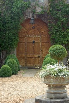 Lovely landscaping surrounding arched doorway.
